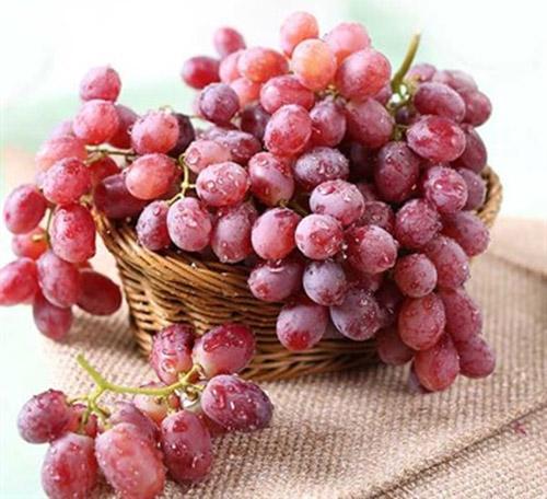 水果中的水晶明珠 挑选葡萄小秘籍
