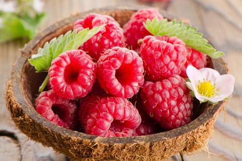 """天然保健品""""黄金树莓"""" 你真的了解么?"""